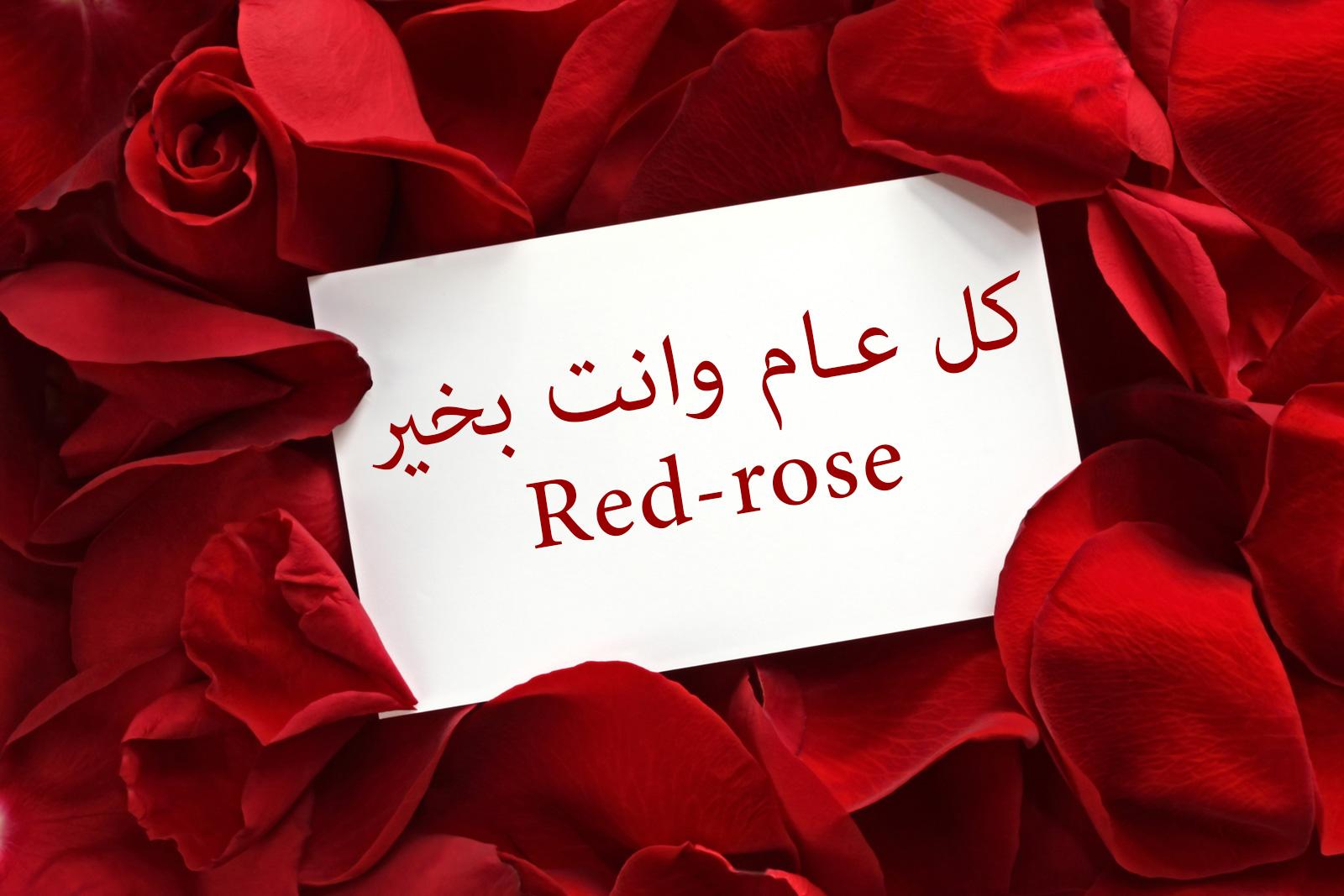 كل عام وانت بخير Red Rose منتديات أنا الأردن