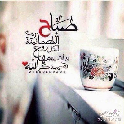أسعد الله صباحكم ...و .. مساؤكم خيرات . - صفحة 4 File